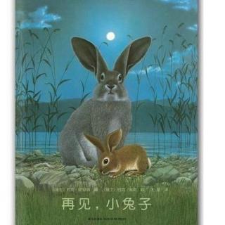 绘本故事:再见,小兔子