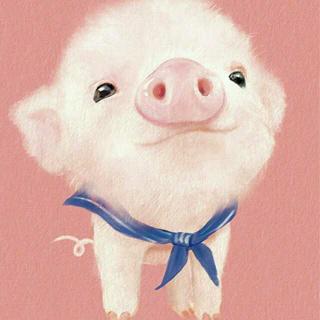 散文|《一只特立独行的猪》——王小波