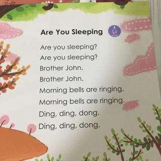 英文版《两只老虎》Are you sleeping?