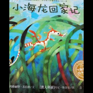 第16期—张海龙回家