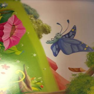 小青虫变蝴蝶
