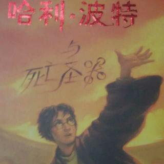 哈利波特与死亡圣器(下)1
