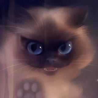 诡段子系列之捕猫人