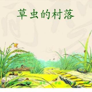 第三课·草虫的村落