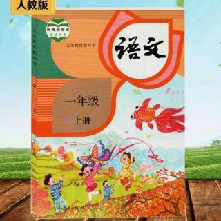 汉语拼音第1课a,o,e(人教版)