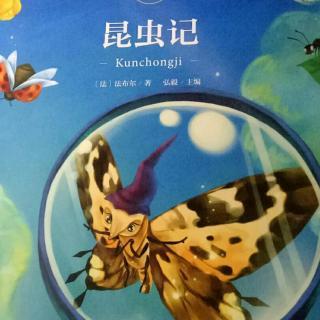 昆虫记第二章神奇池塘