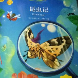 昆虫记第一章昆虫的世界