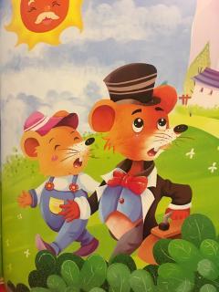 城里老鼠和乡下老鼠🐭