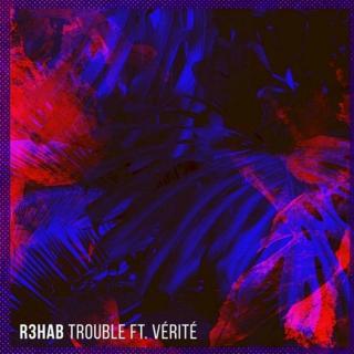Trouble-(It's Different Remix)