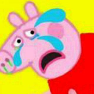 怕打针的小猪胖胖