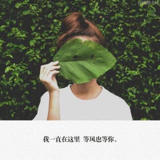 """【雅""""文""""读给你听】05、我就在这里,等风也等你"""