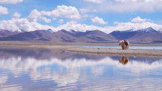 带上心与信仰去西藏❤️