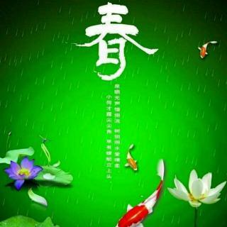 ☔竹林听雨轩之🌸春夜喜雨锦官城😄
