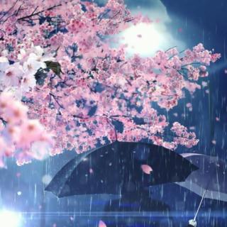 春之小夜曲