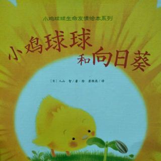 文文姐姐讲故事【小鸡球球和向日葵】