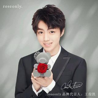 roseonly一生只爱一人