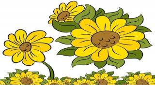 93《向日葵的秘密》