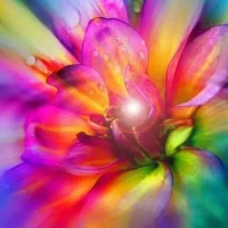 带着觉知意识,在专业的场域释放情绪(节选)