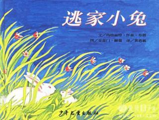 逃家小兔(志琪&雨桥)