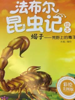 蝎子-荒野上的毒王