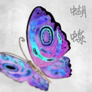 「东凯」蝴蝶(下)——蝴蝶(by.纨素)