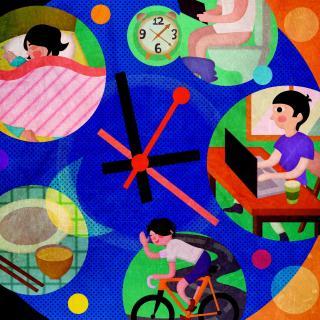 【彩色斑马讲科学】什么是生物钟?