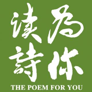 《我喜欢这黄昏》「为你读诗」:陈数(演员)