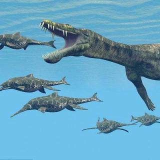 【写故事听】恐龙博物馆历险之海洋恐龙