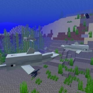 我的世界(1.13版本新增生物)海豚