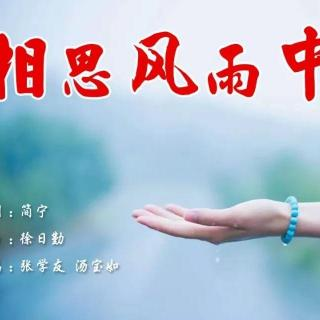 《相思风雨中》国语版 香港乐坛合唱歌代表之一 清风明月翻唱