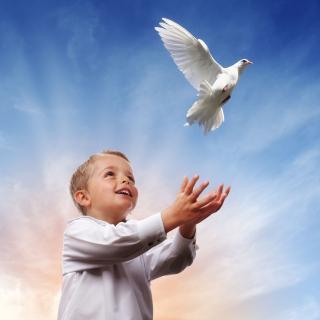 英语美文:希望长着翅膀(爱米莉·狄更生)