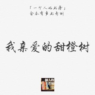 《我亲爱的甜橙树》第18集(终篇)