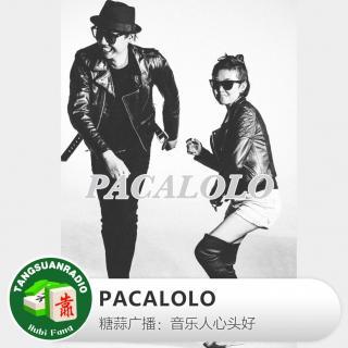 音乐人心头好:PACALOLO