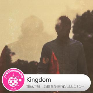 糖蒜爱音乐之The Selector:Kingdom