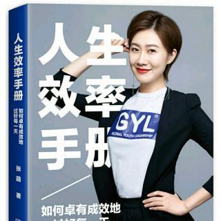 人生效率手册01(请给过去一年的自己打分)~张萌  著