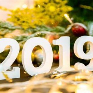 2019,坚持拥有,爱你所爱