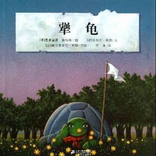 【毛毛阿姨的故事屋】犟龟