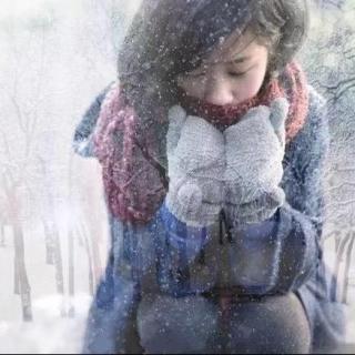 雪在飞  作者:丹枫 朗诵:南飞