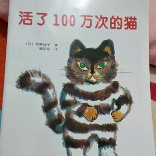 活了100万次的猫 20190206