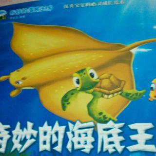 奇妙的海底世界-发怒的魔鬼鱼