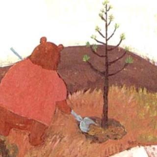 277、《种愿望的笨笨熊》