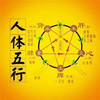 黄帝内经五行五脏养生音乐【木】 养生音乐