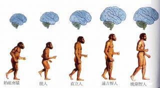 中国人的起源是怎样的呢之一非洲起源说