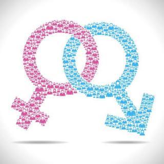 为什么要有男和女-科学男女系列