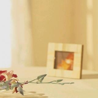 父母尚在苟且,你却在炫耀诗和远方