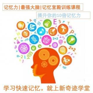 记忆力│最强大脑│记忆宫殿第4节如何开发右脑