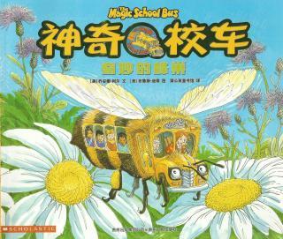奇妙的蜂巢