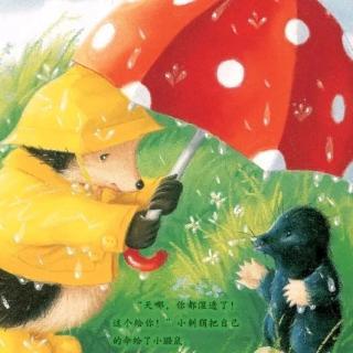 棕幼晚间故事——《雨中的小红伞》