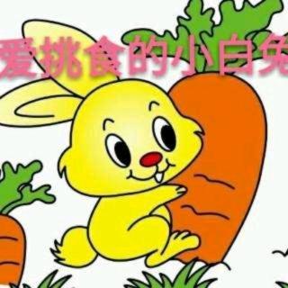 老师妈妈的睡前故事《爱挑食的小白兔》