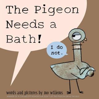 【艾玛读绘本】The Pigeon Needs a Bath